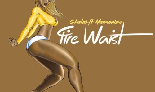 VIDEO: Skales ft. Harmonize – Fire Waist
