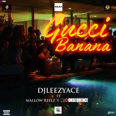 "DJ LeezyAce – ""Gucci Banana"" ft. Mallow Reelz x DJ Consequence"