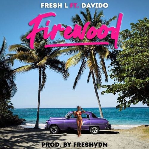 "[Video] Fresh L – ""Firewood"" ft. Davido"