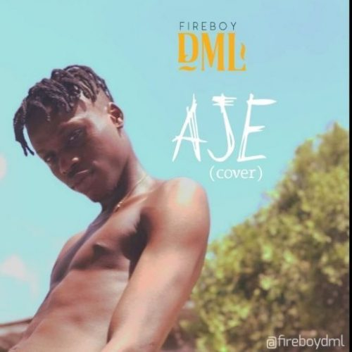 Music: Fireboy DML – Aje (Cover)